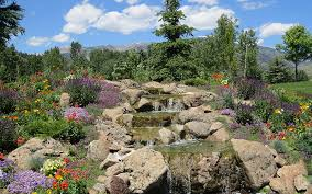 Sawtooth Botanical Garden Sawtooth Botanical Garden Tour Offers Peek At Beautiful Gardens Up