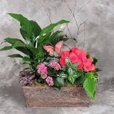 100 Flower Shops In Santa Philadelphia Online Flowers U0026 Gifts Order U0026 Send Flowers Today