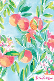 best 25 lily pulitzer painting ideas only on pinterest lilly lilly pulitzer x starbucks 2017