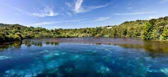 te waikoropupu springs most clear water of the world 3000x1379