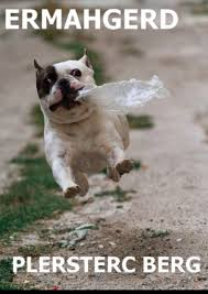 French Bulldog Meme - 9 funniest french bulldog memes what the frenchie