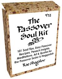 passover seder books the passover soul kit holy sparks books for spiritual