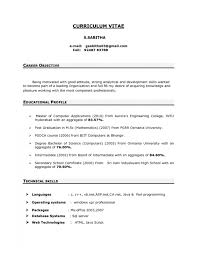general resume objective example sample objective on a resume