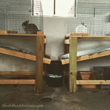 Super Hutch Rabbit Hutch With Automatic Collector Rabbit Hutch Plans