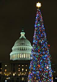 file capitol christmas tree 6472559909 jpg wikimedia commons