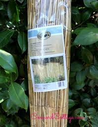 diy bamboo coastal candleholders hometalk