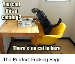 Meme Catalog - you call thisa catalog there s no catin here the purrfect fucking