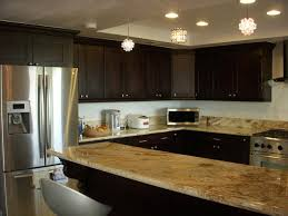Espresso Kitchen Cabinets Espresso Shaker Kitchen Cabinets Home Design Traditional