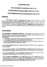 Cpa Sample Resume by 100 Resume Tips To Improve Essay Example Business Example 28