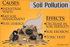 causes and effects of land pollution you re probably undervaluing causes and effects of soil pollution