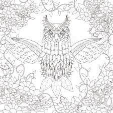beautiful owl coloring page design in exquisite style royalty free