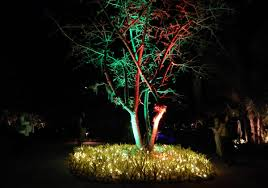 Botanical Gardens Christmas Lights by Night Lights In The Garden A Naples Botanical Tradition Naples