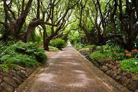 Botanic Gardens Uk 20 Botanical Gardens With To Behold Lettings