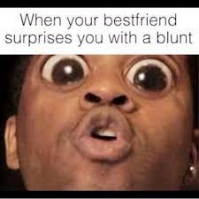 Stoner Meme Guy - the top 10 best blogs on weed memes