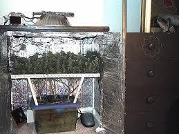 chambre culture cannabis complete chambre de culture cannabis complete meilleur chambre beautiful