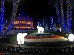 This Is Halloween Christmas Lights by Blog Posts