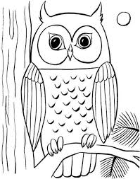 coloring pages gorgeous coloring pages draw owl free
