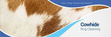 Rugs In Dallas Cowhide Rug Cleaning In The Dallas Fort Worth Area Dalworth Rug