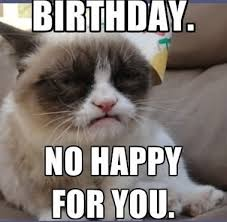Birthday Animal Meme - new best happy birthday memes for her latest collection