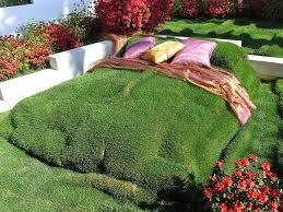 plante verte dans une chambre 24 designs nature pour urbains chambres vertes image fleur et urbain