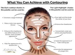Makeup Contour aesthetica cosmetics contour and highlighting makeup kit