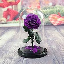 rose in glass amazon com defancy preserved rose in glass dome with gift box