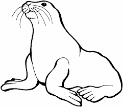 sea whale orca for kids whale ocean animals coloring page coloring
