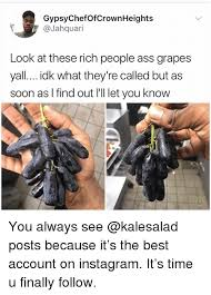Rich People Meme - gypsychefofcrownheights look at these rich people ass grapes yall