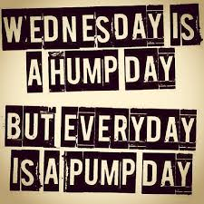 Hump Day Meme Dirty - the caption says it all wednesday is a hump day but every flickr