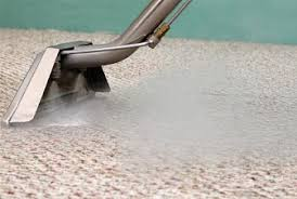 lake forest carpet steam cleaning