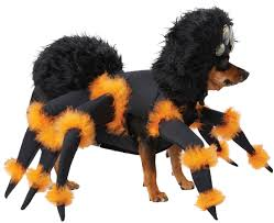scary halloween spider pup dog costume costume craze