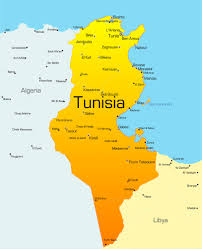 tunisia physical map map of tunisia in africa africa map