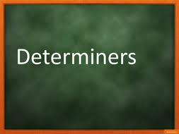 determiners by sessa1 teaching resources tes