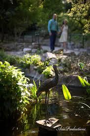 Zilker Botanical Garden Productions Jaime Engaged At Zilker Botanical