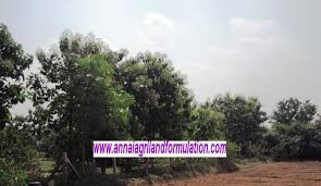 land for sale properties for sale farms for sale cheap land for