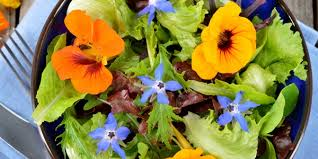 edible blue flowers ecocentric real food right now and how to cook it edible flowers