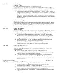 Vp Finance Resume Examples Esl College Essay On Hillary Clinton Application Essay National