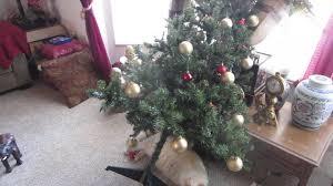 cat knocks tree then sleeps it