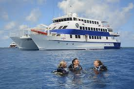 padi referral course the great barrier reef cairns dsdd