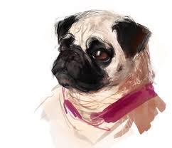 pug sketch by guppeeblue on deviantart