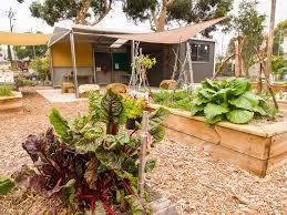 beautiful community garden design ideas images home design ideas
