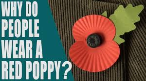 why do people wear a red poppy what is poppy day rememberance