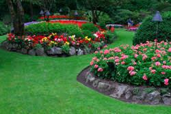 wdb landscaping services in pa nj de