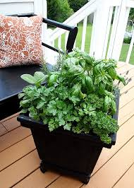 Herb Garden Pot Ideas Herb Gardening Containers Pots Gardening With Vegetables Plant