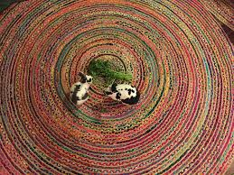 New Rugs New Rugs Lets Dig A Hole New Rugs Tristan U0027s Blog For Sven U0027s