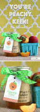 Cute Homemade Gifts by 1272 Best Diy Handmade Gifts Images On Pinterest Homemade Gifts