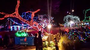 Zoo Lights Az by Tucson Daily Photo December 2014