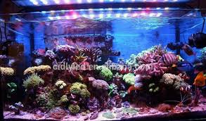 led aquarium lights for reef tanks marine used led aqua bar 60cm 2ft coral reef led aquarium lights 2ft