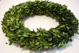 boxwood wreath garden fresh 16 boxwood wreath tradingsmith