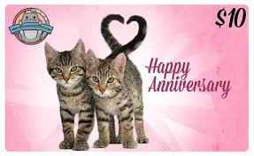cat themed gift cards birthday anniversary and thank you card